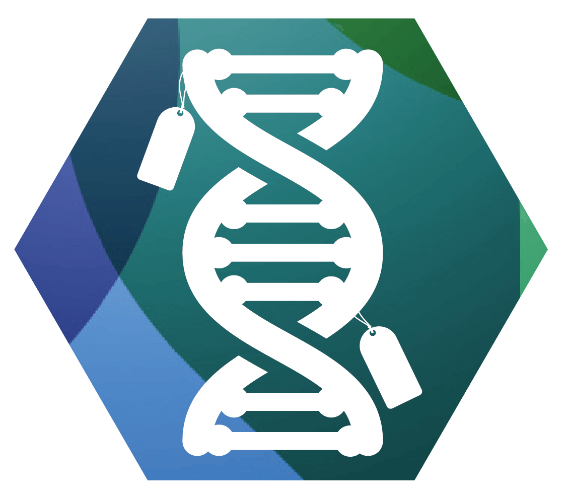 Epigenetics_Icons_DNA-01-1